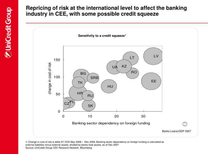 Repricing of risk at the international level to affect the banking industry in CEE, with some possible credit squeeze
