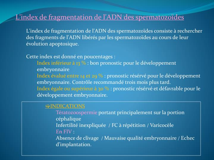 L'index de fragmentation de l'ADN des