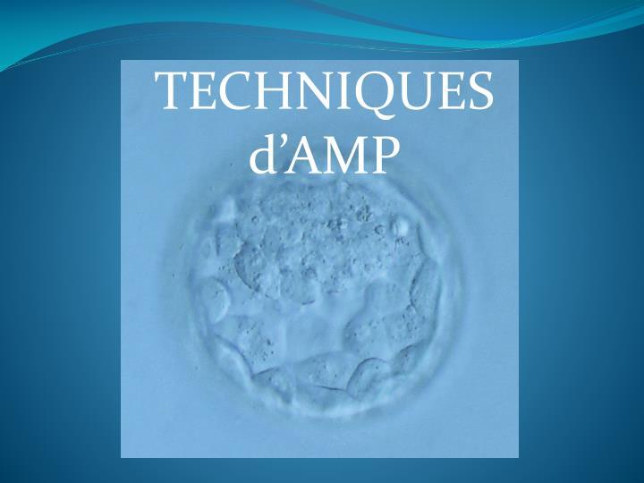 TECHNIQUES d'AMP