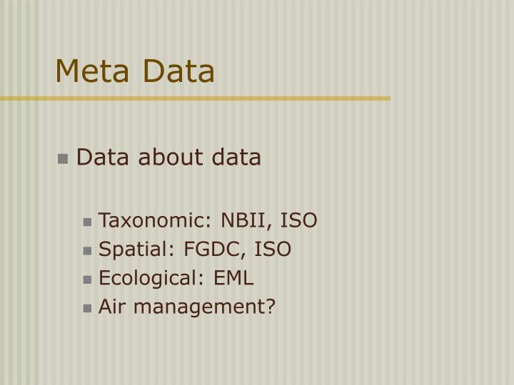 Meta Data