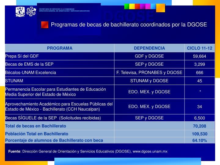 Programas de becas de bachillerato coordinados por la DGOSE