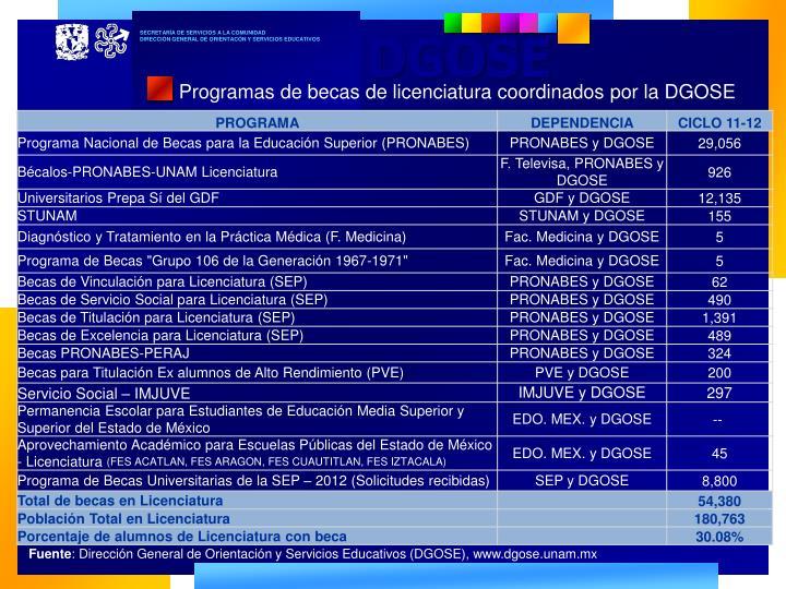 Programas de becas de licenciatura coordinados por la DGOSE