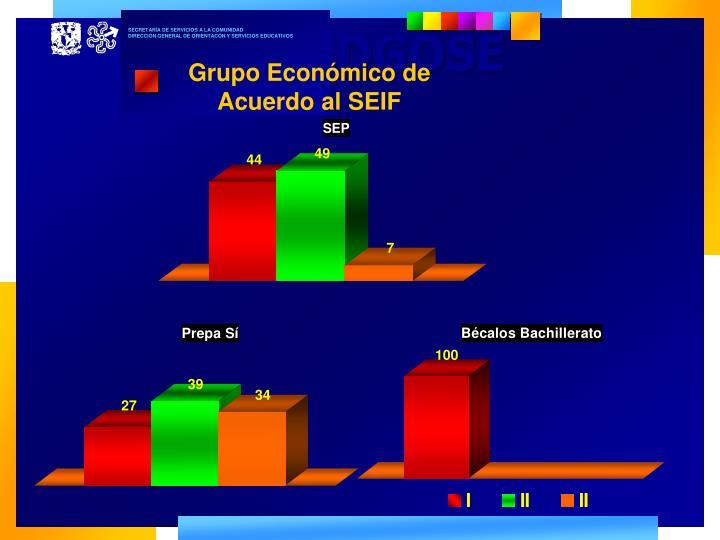 Grupo Económico de Acuerdo al SEIF