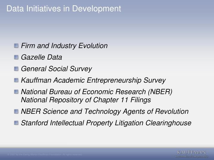 Data Initiatives in Development