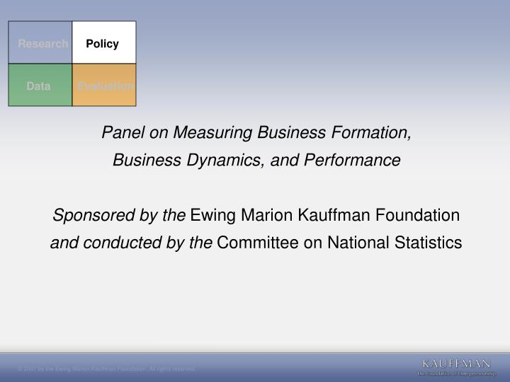 Panel on Measuring Business Formation,