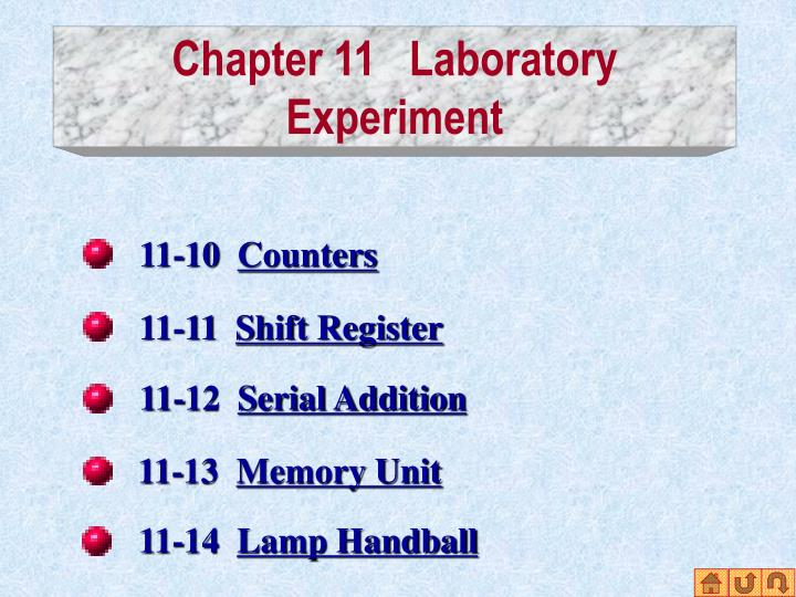 Chapter 11 laboratory experiment2