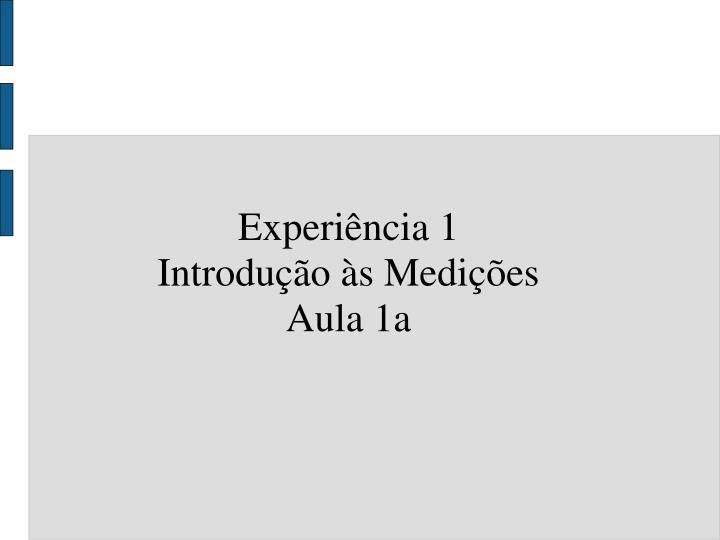 Experiência 1