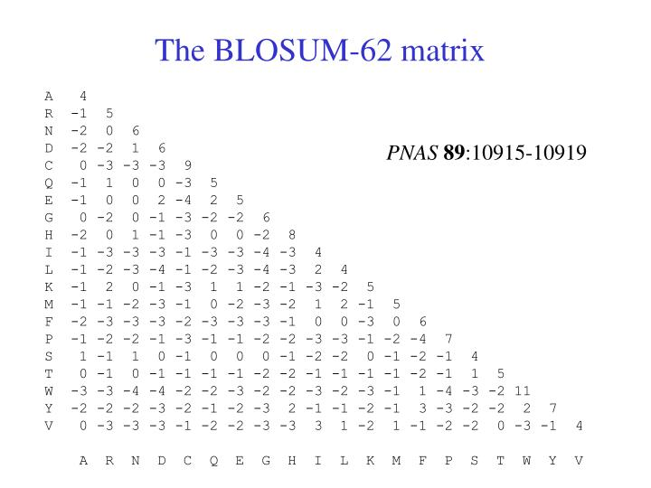 The BLOSUM-62 matrix