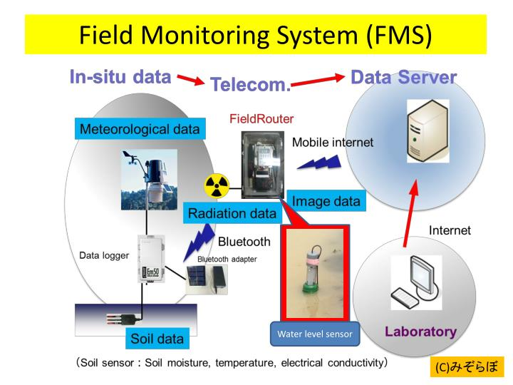 Field Monitoring System (FMS)