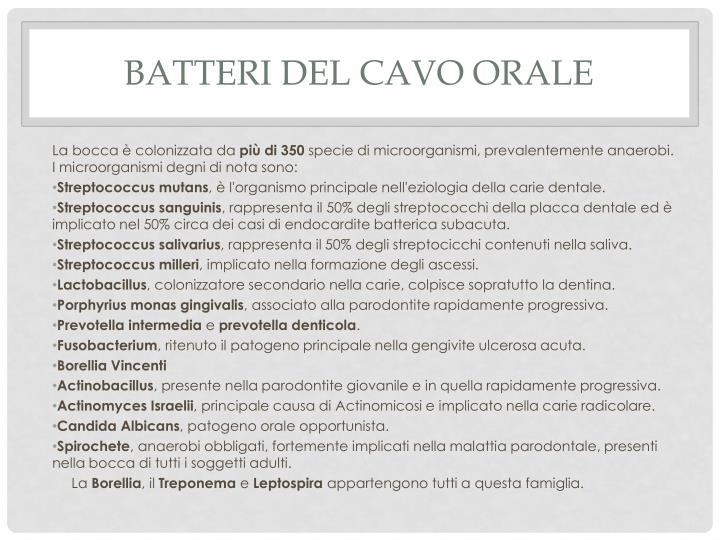 Batteri del cavo orale