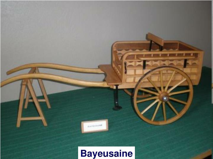 Bayeusaine