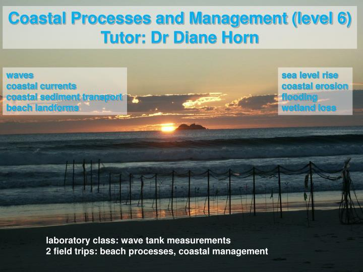 Coastal Processes and Management (level 6)