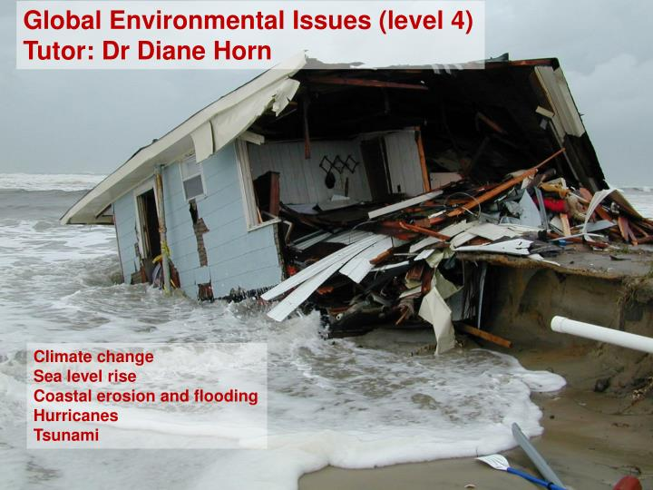 Global Environmental Issues (level 4)