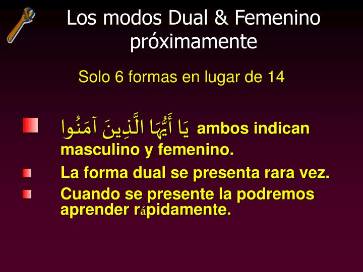 Los modos Dual & Femenino próximamente