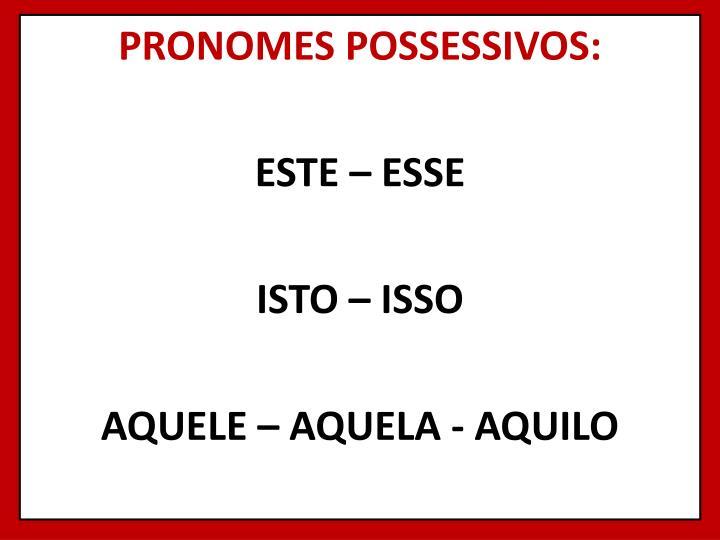 PRONOMES POSSESSIVOS: