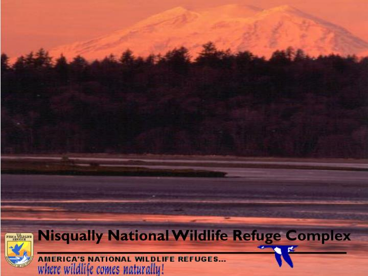 Nisqually National Wildlife Refuge Complex