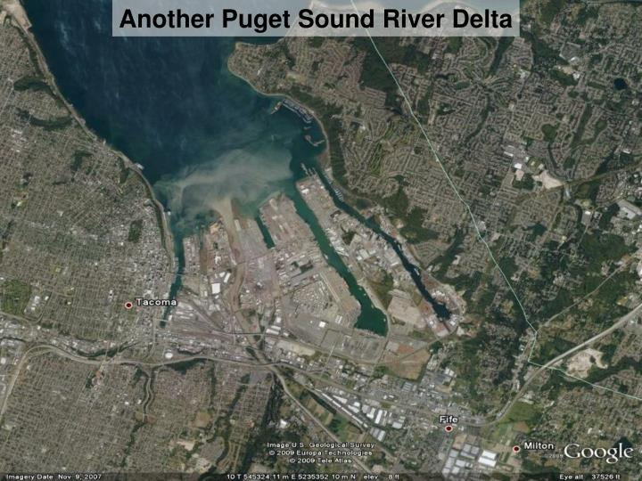 Another Puget Sound River Delta