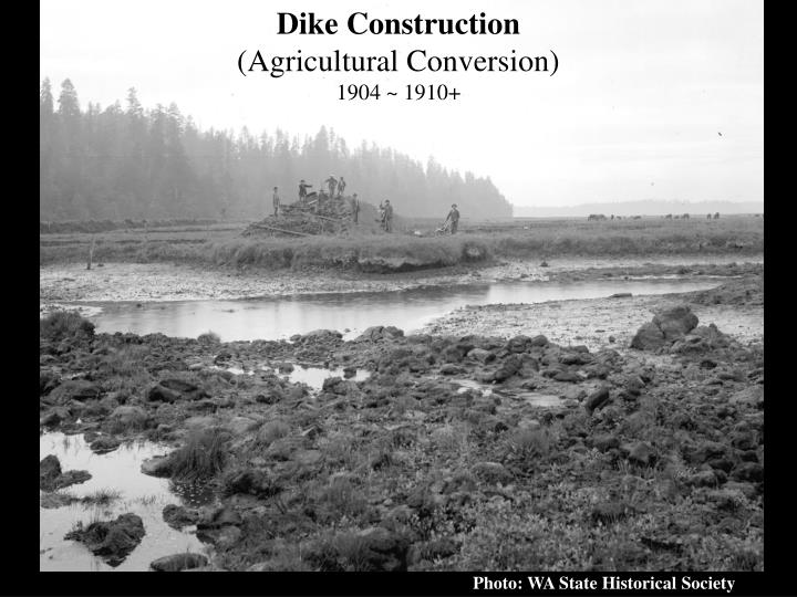 Dike Construction