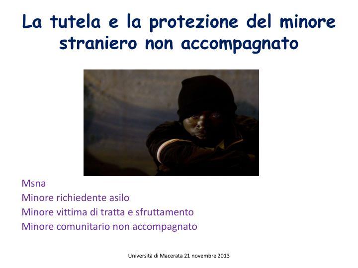 La tutela e la protezione del minore straniero non accompagnato