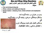 bee and wasp sting reactions