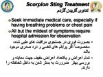scorpion sting treatment1