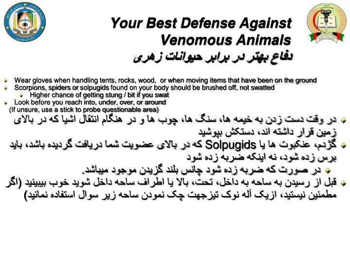 Your Best Defense Against Venomous Animals
