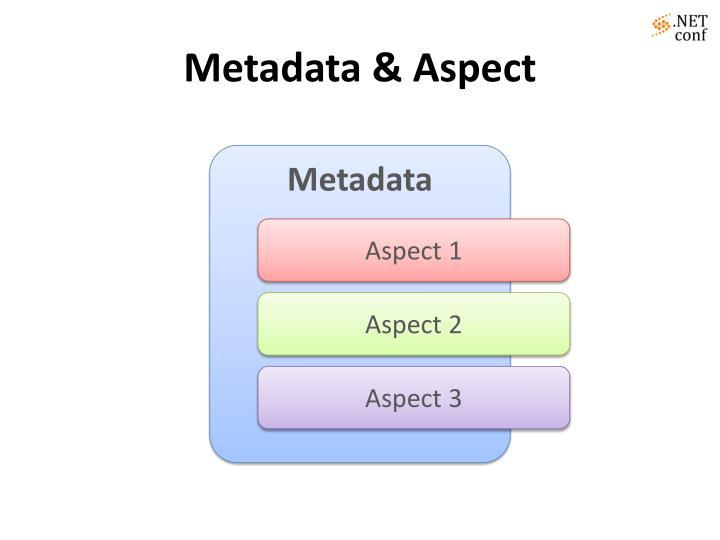 Metadata & Aspect