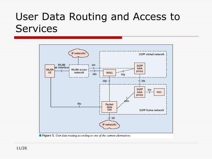 User Data Routing and Access to Services