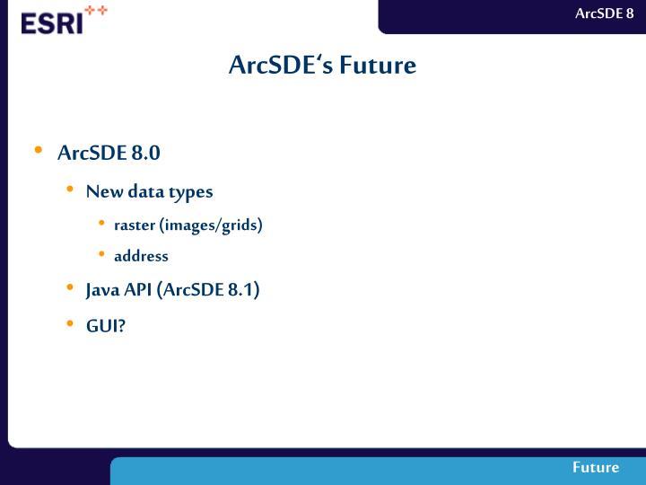 ArcSDE's Future