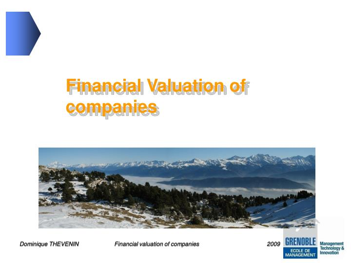 Financial Valuation of