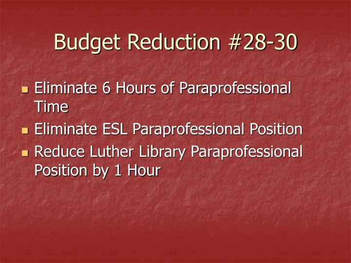 Budget Reduction #28-30