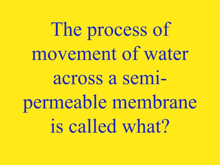 The process of movement of water across a semi-permeable membrane is called what?