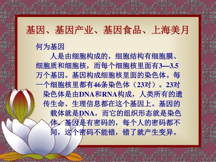 基因、基因产业、基因食品、上海美月