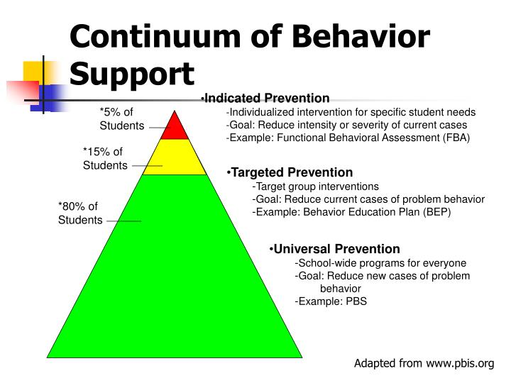 Continuum of Behavior Support