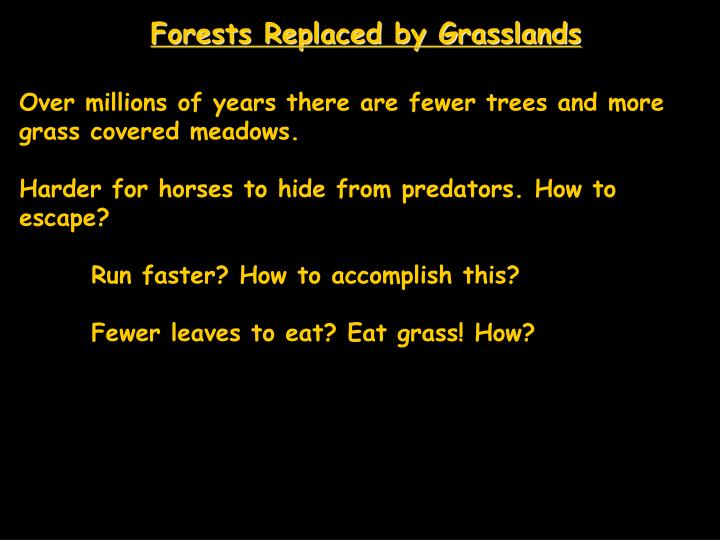 Forests Replaced by Grasslands