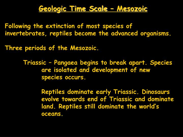 Geologic Time Scale – Mesozoic