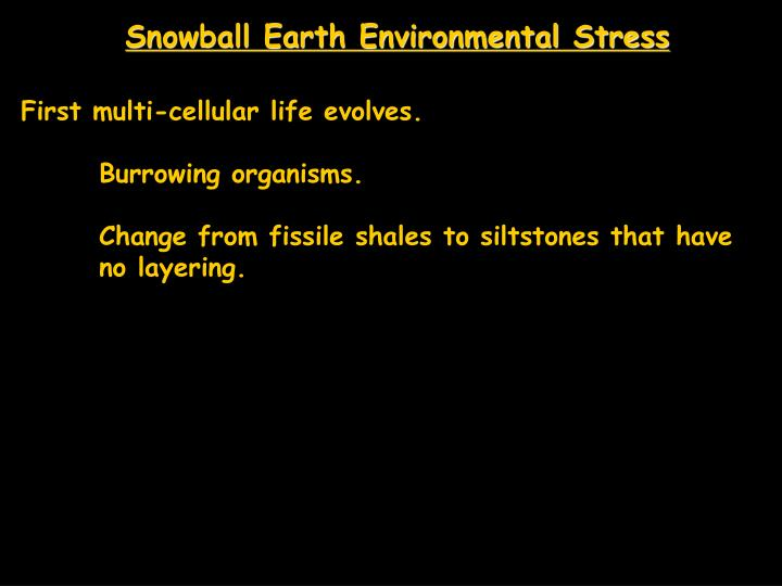 Snowball Earth Environmental Stress