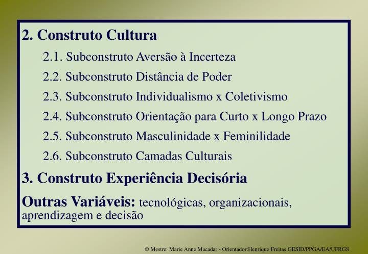 2. Construto Cultura