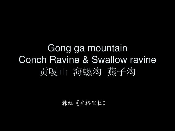 Gong ga mountain conch ravine swallow ravine