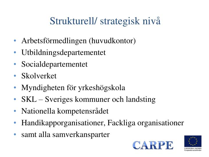 Strukturell/ strategisk nivå