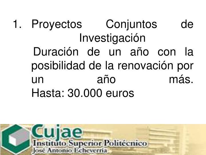 Proyectos Conjuntos de Investigación