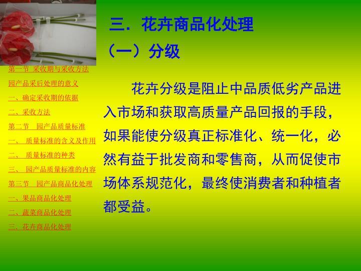 三.花卉商品化处理