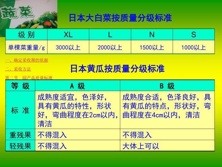 日本大白菜按质量分级标准