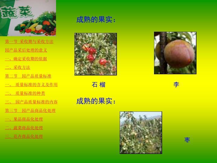 成熟的果实: