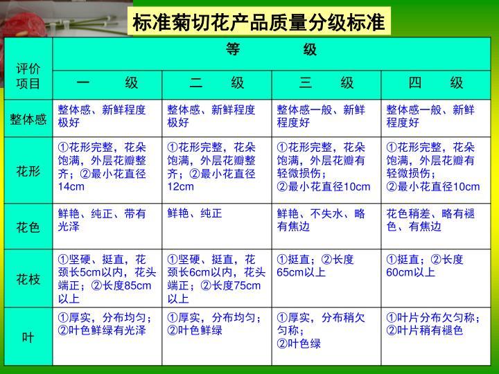 标准菊切花产品质量分级标准