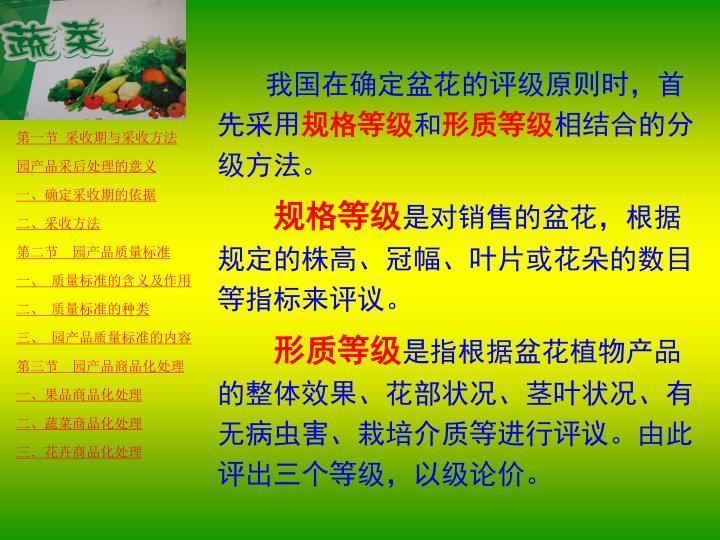 我国在确定盆花的评级原则时,首先采用