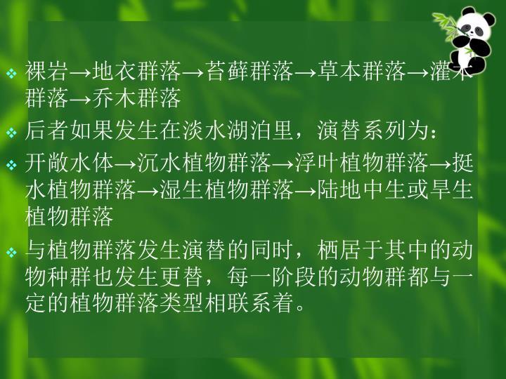 裸岩→地衣群落→苔藓群落→草本群落→灌木群落→乔木群落