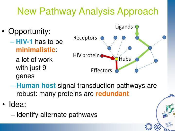 New Pathway Analysis Approach