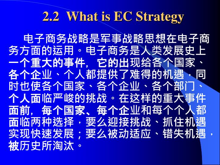 2.2  What is EC Strategy