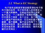 2 2 what is ec strategy